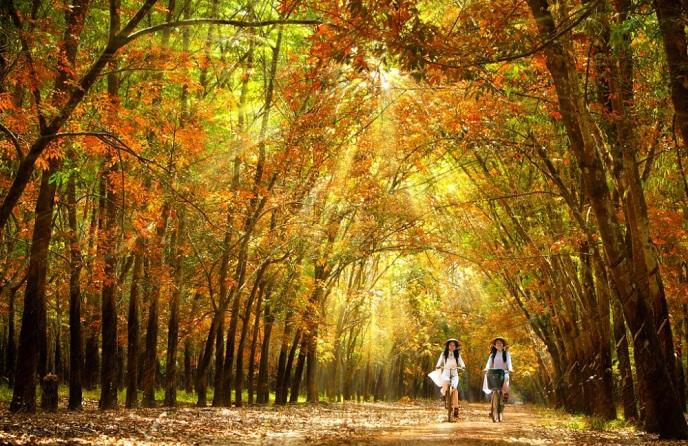 Hình ảnh thiên nhiên đẹp nên thơ